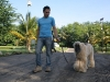004 A Cuban Dog Show