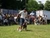 024 A Cuban Dog Show