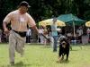 026 A Cuban Dog Show