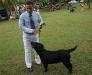 028 A Cuban Dog Show