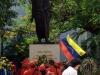 0008 Activity at Simon Bolivar park in Old Havana