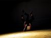 danza-libre-02