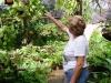 1-alina-en-su-jardin