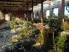 ruinas015