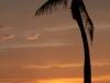Cuba's Beaches