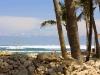 Pareja placenteramente en la playa.  Photo: Carlos Durá