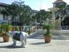 0001 United Buddy Bears in Havana