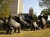 Elefantes 2 parque de comunicaciones 004.jpg
