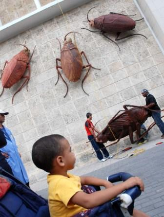 Survival by Roberto Favelo at the Havana 2009 Biennial, photo: Caridad