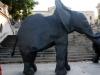 elefante 009.jpg