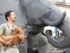 elefante 040.jpg