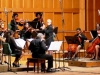 Camerata Romeu chamber orchestra