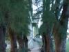 cementerio-cienfuegos-21
