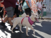 Havana-Times-Marcha-against-animal-abuse-photo 4.JPG
