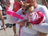 Havana-Times-Marcha-against-animal-abuse-photo 7.JPG