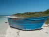 Cuban Chugs at Marquesas Keys Photos by Bill Klipp