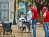 Barber in Old Havana.  Photo: Carolina Sanchez