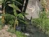0027 Drains flowing into the Almendares river
