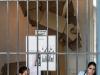custodios-del-museo