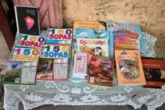 Children's books at Felicia's small book stand in Havana.