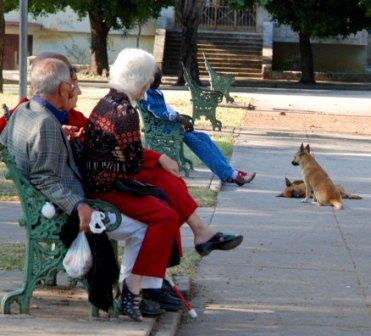 This is the island of white hairs and the sensation of aging has become nearly omnipresent. Photo: Caridad