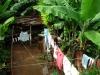 Private garden in Trinidad by Marie Pierre Allard