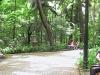 13-parque-avenida-paulista