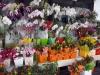 16-floristeria-rio-de-janeiro