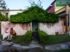 arquitectura-verde