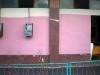 01-el-sexto-rosado-calle-linea