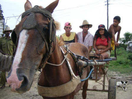 The blockade has seriously hurt the Cuban economy. Photo: Elio Delgado