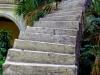 Man on Stairwell