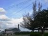 6-vista-panoramica