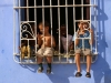 Kids in a window, Trinidad.  Photo by James NG