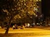 pasando-la-noche-en-la-avenida-de-los-presidentes