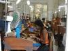 The Cohiba Cigar Factory
