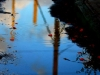 The Magic of Puddles