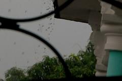 Llueve-en-guantanamo-10