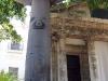 004 Ceiba Tree