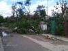 After the tornado.  Photo: Luis Enrique Gonzalez Muñoz