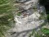Animal muerto en la colina