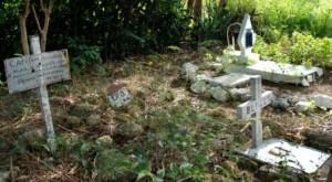 Alamar's Dog Cemetery