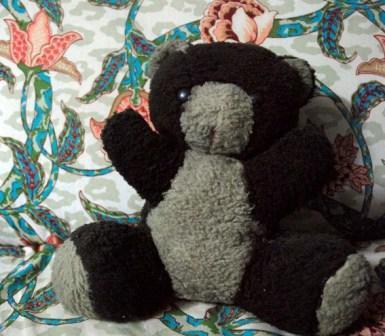 My teddy bear Misha