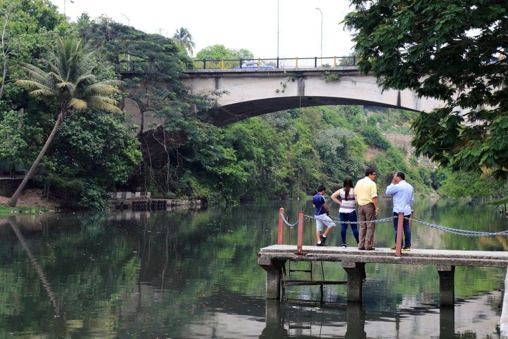 Puente Almendares
