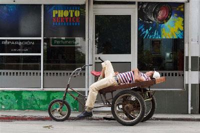 Nap time.  Photo: Juan Suarez