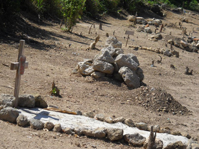 The Alamar dog cemetery.