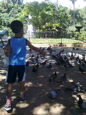 Feeding the pigeons at the Plaza de Armas in Old Havana.