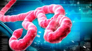 mhoje-ebola3-photo-jpg