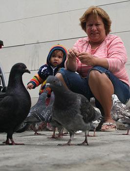 Feeding the pigeons on Obispo Street.