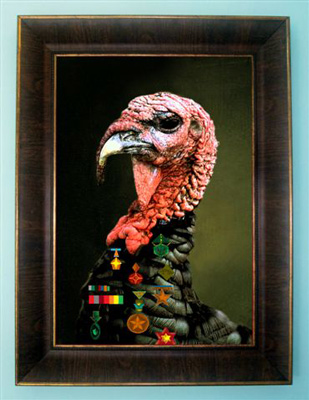 Turkey with a frame.